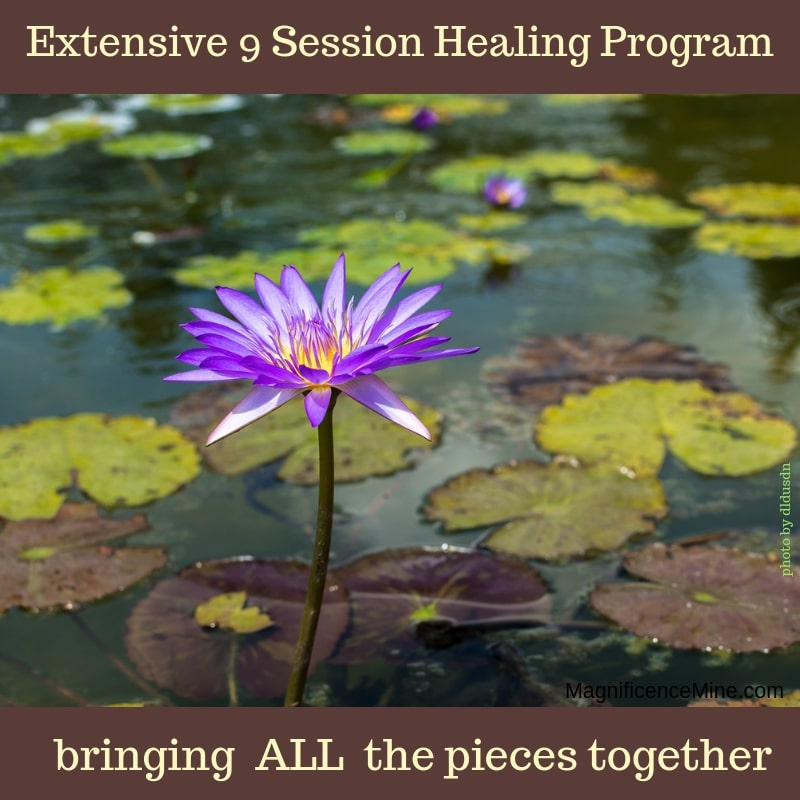 Extensive 9 Session HEALING PROGRAM
